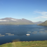 Faroe Islands - The best investor is one with dirty shoes - Bonafide Ltd. team visiting fish farms around the globe.